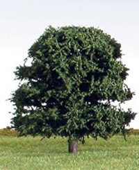 70mm Green Deciduous Tree